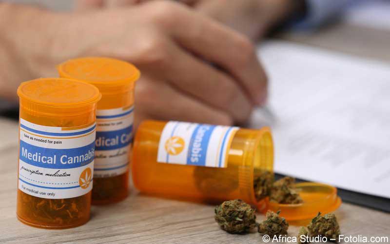 Cannabis Verordnung
